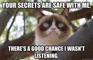 grumpy-cat-secrets