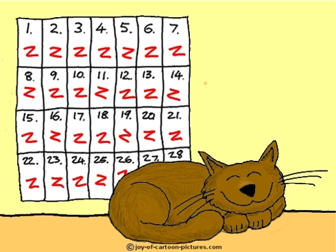 T2-cartoon-cat-sleeping